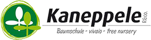R. Kaneppele & Co.
